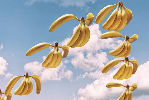 Banana Migration